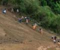 Corruption And Deforestation Caused Oaxaca's Mudslide Disaster