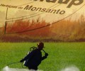 War Over Monsanto Gets Ugly