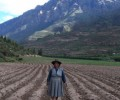 The Militarization of the Peruvian Countryside