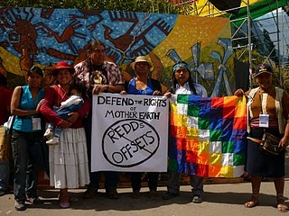 Why Bolivia Stood Alone in Opposing the Cancún Climate Agreement